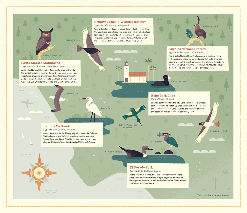 Birds Of Los Angeles  Alexander Vidal Illustration
